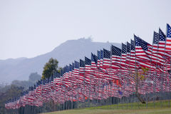Front of the 3000 flags Royalty Free Stock Photos