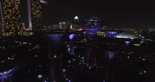 Front aerial view of Supertree Grove in the Graden at night in Singapore city stock video footage