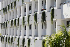 Front of Apartment Building in Tenerife. White partment building with trailing green plants at regular intervals along the external walls royalty free stock images