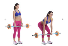 Front Barbell Squat Stock Photos