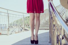 Front close up low angle view photo of sexual seductive beautiful pretty thin straight long legs. Party wedding valentine day cele stock photography