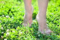 Front close-up view of female legs stepping on green grass Stock Photo