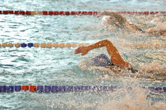 Front crawl swimmers. Close up of swimmers swimming front crawl stroke at a competition. XVe French Winter Open Masters Championships Dunkerque France French Stock Photography