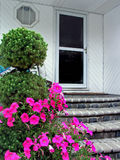 Front door. And flowers outside Royalty Free Stock Photo