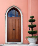 Front door. With plant outside stock image