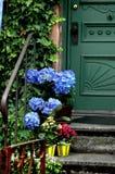 Front Door Color. Flower pots on steps near old door royalty free stock image