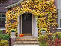 Front door. With colorful ivy in fall Royalty Free Stock Image