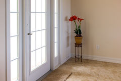 Front door with daylight shining through. Bright and airy image of front entry to house showing white door with sunlight streaming through and a plant stand and Stock Images