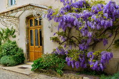 Front door with decoration Stock Photography