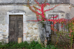 Front Door and Gate of an Old Building Royalty Free Stock Images