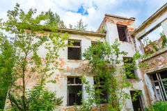 Front facade of an abandoned building overgrown trees and vegetation Royalty Free Stock Images