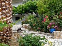 Front Garden Path coloré Photo libre de droits