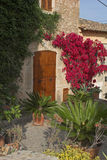 Front garden with plants. Rural front garden in Spain Royalty Free Stock Images