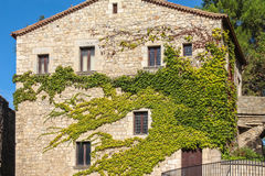 Front of the house, overgrown with ivy in the Spanish city of Gerona Stock Photo