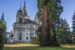 Front of the La Granja palace in horizontal format Segovia Spain. Centennial tree and the back facade of the La Granja of San Ildefonso palace Segovia Spain Royalty Free Stock Images