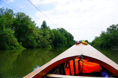 Front of the long tail boat between mangrove forest in the river Royalty Free Stock Photo