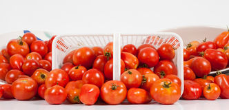 Front Panoramic View of Field Tomatoes. A studio front panoramic close-up view of a basket of ripe red field tomatoes on its side flanked by two angled dishes of Stock Images