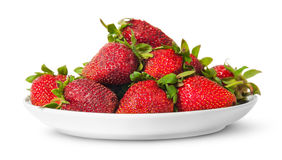 In front pile of fresh juicy strawberries on white plate Royalty Free Stock Photography