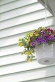Front Porch Flower Basket. Vertical shot of a hanging flower basket against a vinyl siding backdrop Stock Image