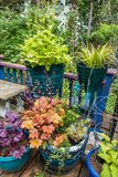 Front Porch Plants fotos de stock royalty free