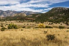 Front Range Foothills Royaltyfria Bilder