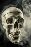 Front of real skull in abstract smoke isolated on black background. stock photo
