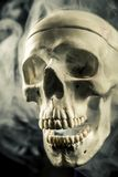 Front of real skull in abstract smoke isolated on black background. royalty free stock photos