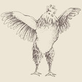 Front rooster sketch Royalty Free Stock Photos
