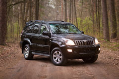 Front side of the black SUV in forest.  Stock Photography