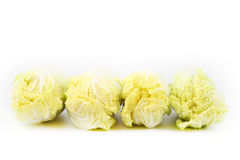 Front side Chinese cabbage. On white background Stock Photography