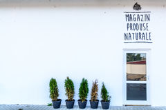 Front side of a grocery store, with green small trees and one do. Or. Horizontal view of a white grocery store, in an unkown town in Romania Stock Photos