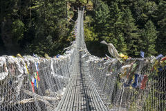 Front side of Hillary Suspension Bridge. Front side of Hillary Suspension Bridge, Everest region, Nepal Royalty Free Stock Photo