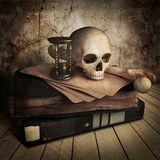 Front side view of ancient skull with lots books Stock Images