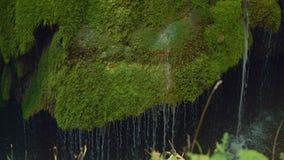 Front Slow Motion Shot des einzigartigen Bigar-Wasserfalls in Rumänien stock footage