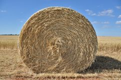 Front straw bale Stock Photos
