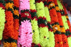 Colorful flower garlands hanging on street shop. In front of temple, Street shops selling plastic and real flower garlands in india Stock Image
