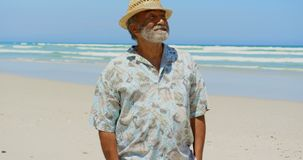 Front view of active senior African American man with hands in pocket standing on the beach 4k. Front view of active senior African American man with hands in stock video footage