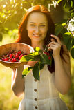 Front view of attractive foxy female picking cherries from tree. Sunny day in the garden, woman holding bowl with fresh ripe cherries. Toned image Stock Photo