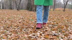 Autumn Women`s feet in blue jeans Burgundy boots walk on yellow leaves in Park