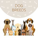 Group of Dog Breeds Illustration Royalty Free Stock Images