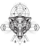 Front view of bear head doodle Royalty Free Stock Images