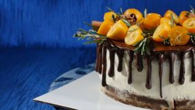 Front view of a biscuit cake. Pie with fruits and flowers. Close up front view cookie and cream cake. The chocolate cake Stock Images