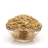 Front view of Bowl of Organic Fennel seed. Organic Fennel seed (Foeniculum Vulgare) in glass bowl isolated on white background stock photo