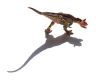 Front view brown carnotaurus toy with shadow Stock Photography