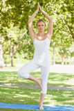 Front view of calm woman in tree yoga pose on an exercise mat Royalty Free Stock Image