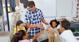 Front view of Caucasian male teacher explaining animal skeleton model in the classroom  4k. Front view of Caucasian male teacher explaining animal skeleton model stock footage