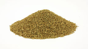 Front View Celery Seed Stock Image