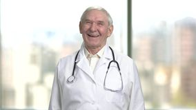 Front view cheerful senior doctor laughing hard. Portrait of a jovial old male doctor in lab coat and stethoscope. Bright abstracrt blurred windows background stock video