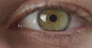 Blinking green eye. Front view close up detail of the green eye of a woman looking stratight camera and blinking stock video footage