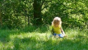 Front View da menina despreocupada bonito na camisa amarela que senta-se na terra e que pegara a apreciação da grama verde ensola vídeos de arquivo